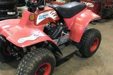Gasoline 50 cc 4 wheeler